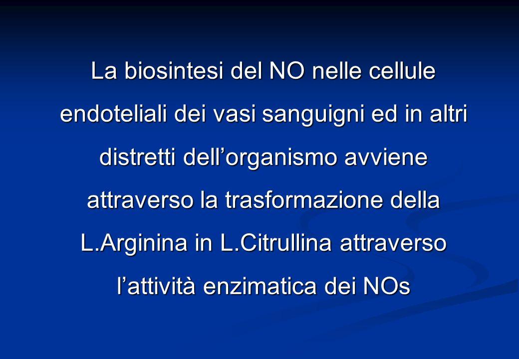 La biosintesi del NO nelle cellule endoteliali dei vasi sanguigni ed in altri distretti dell'organismo avviene attraverso la trasformazione della L.Arginina in L.Citrullina attraverso l'attività enzimatica dei NOs