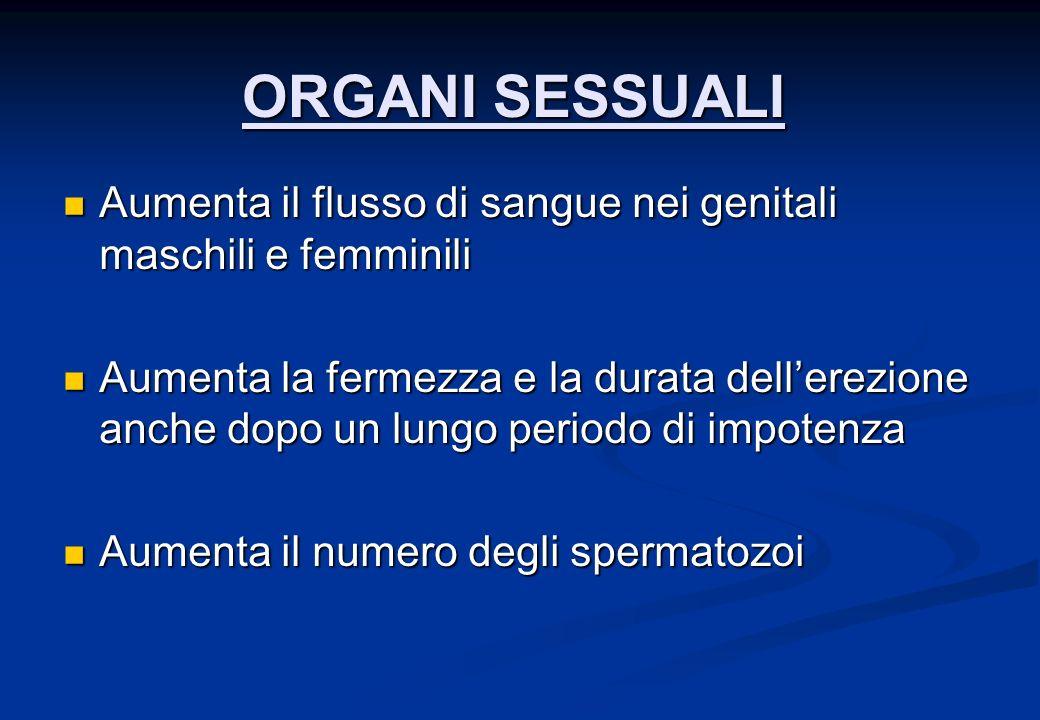 ORGANI SESSUALI Aumenta il flusso di sangue nei genitali maschili e femminili.