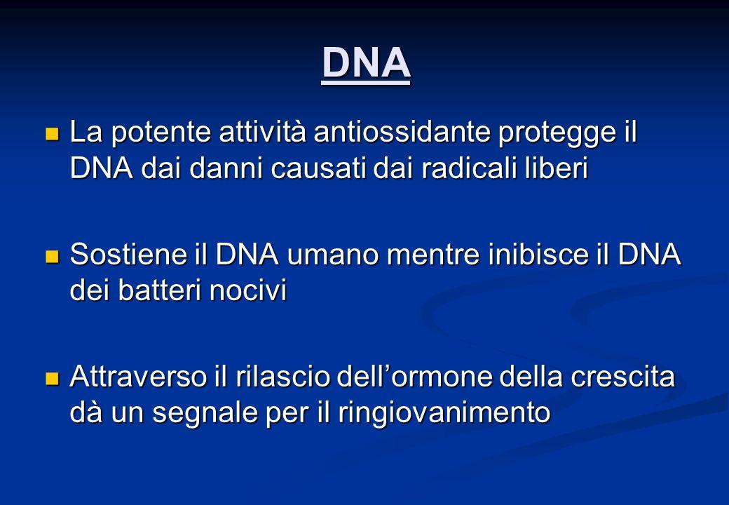 DNA La potente attività antiossidante protegge il DNA dai danni causati dai radicali liberi.
