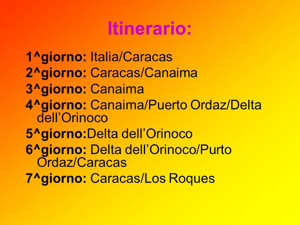 Itinerario: 1^giorno: Italia/Caracas 2^giorno: Caracas/Canaima