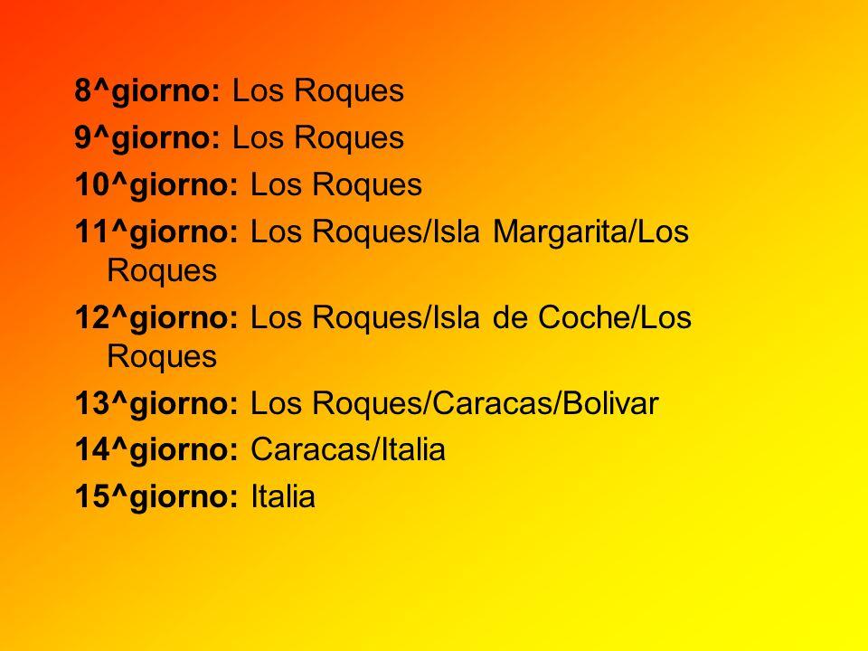 8^giorno: Los Roques9^giorno: Los Roques. 10^giorno: Los Roques. 11^giorno: Los Roques/Isla Margarita/Los Roques.