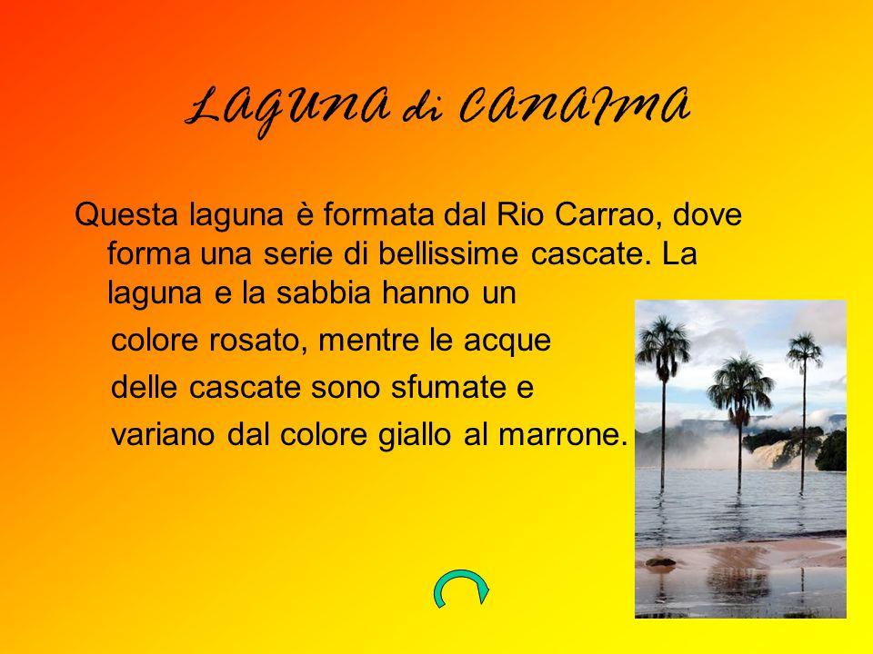 LAGUNA di CANAIMA Questa laguna è formata dal Rio Carrao, dove forma una serie di bellissime cascate. La laguna e la sabbia hanno un.