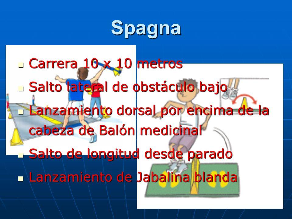 Spagna Carrera 10 x 10 metros Salto lateral de obstáculo bajo