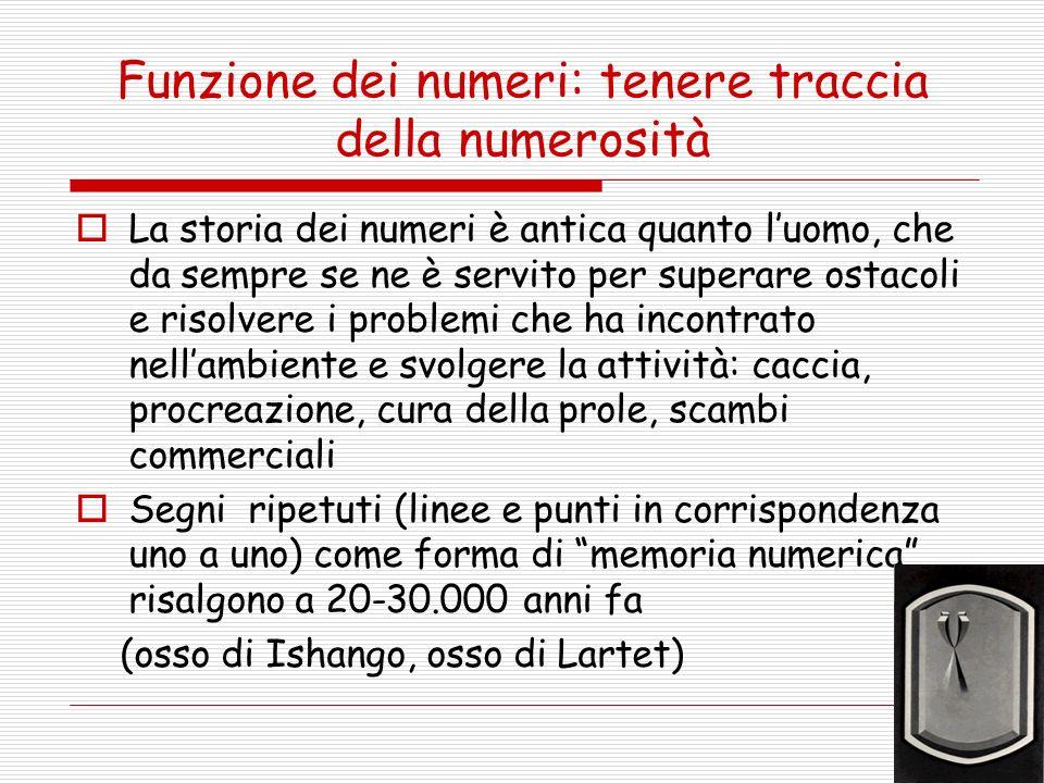 Funzione dei numeri: tenere traccia della numerosità