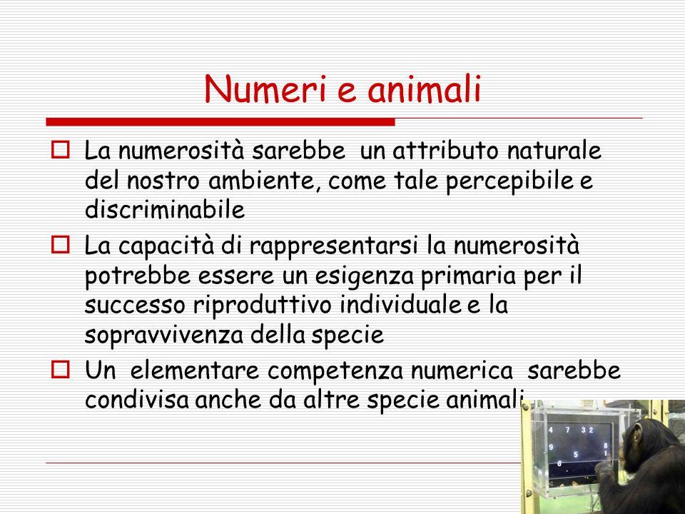 Numeri e animali La numerosità sarebbe un attributo naturale del nostro ambiente, come tale percepibile e discriminabile.