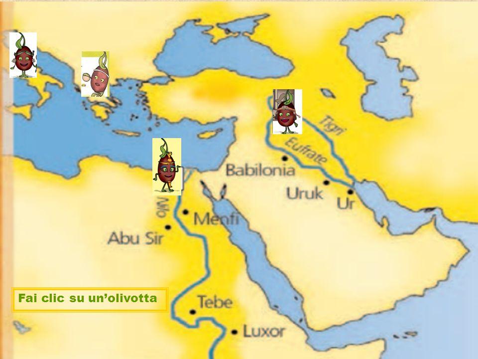 Scegli l' Olivotta Fai clic su un'olivotta