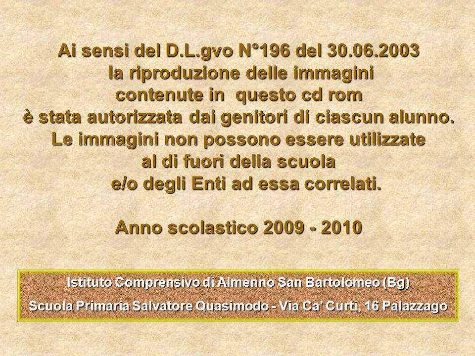 Ai sensi del D.L.gvo N°196 del 30.06.2003
