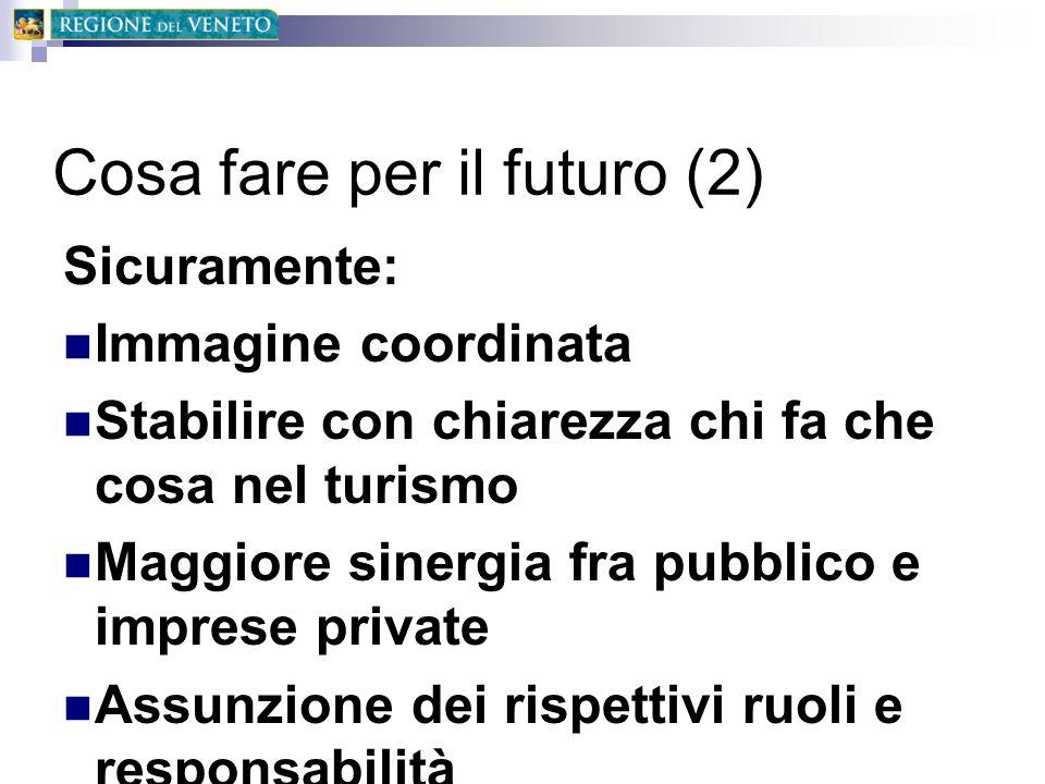 Cosa fare per il futuro (2)