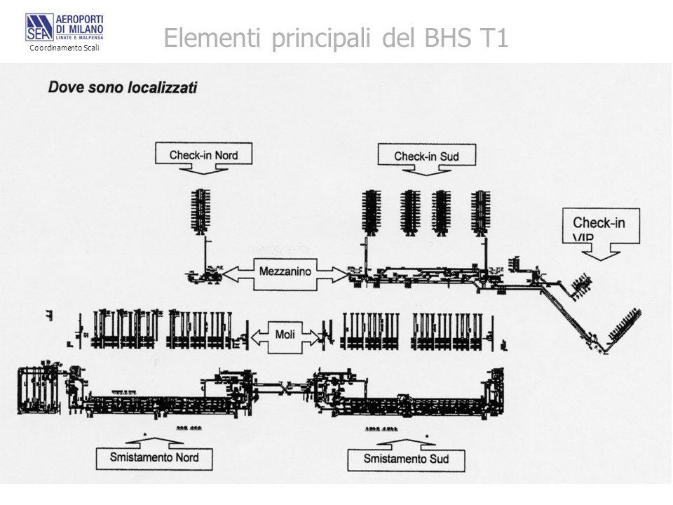 Elementi principali del BHS T1