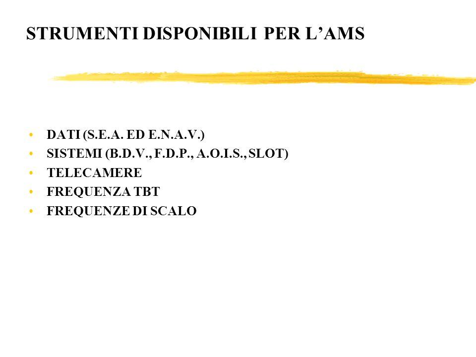 STRUMENTI DISPONIBILI PER L'AMS