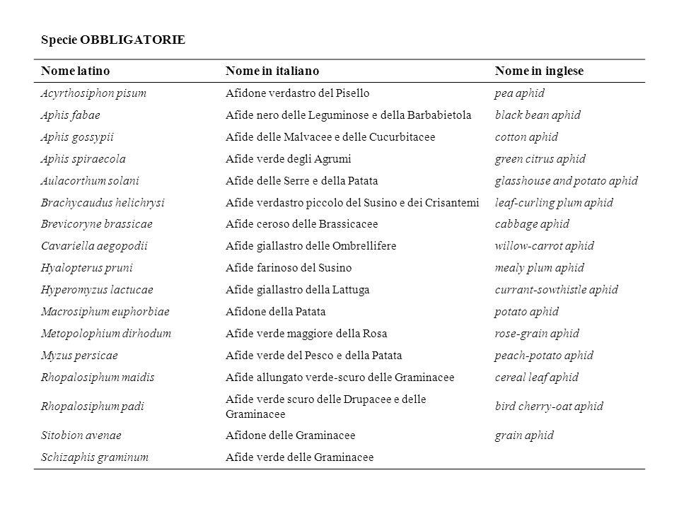 Specie OBBLIGATORIE Nome latino Nome in italiano Nome in inglese