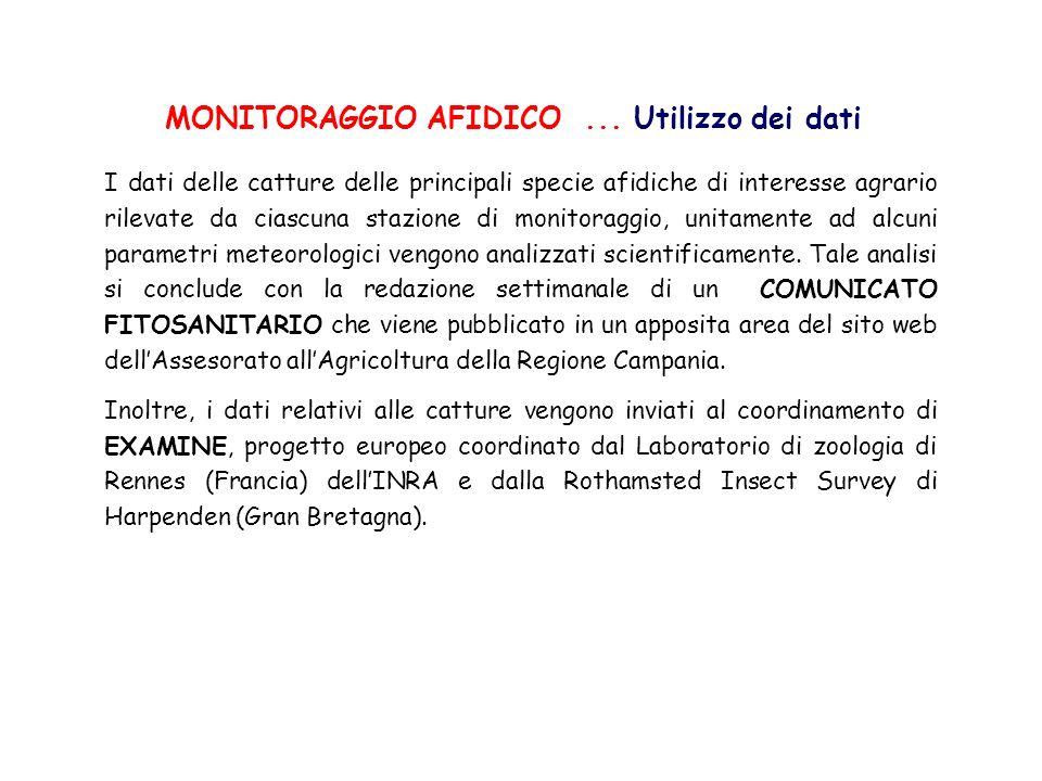 MONITORAGGIO AFIDICO ... Utilizzo dei dati