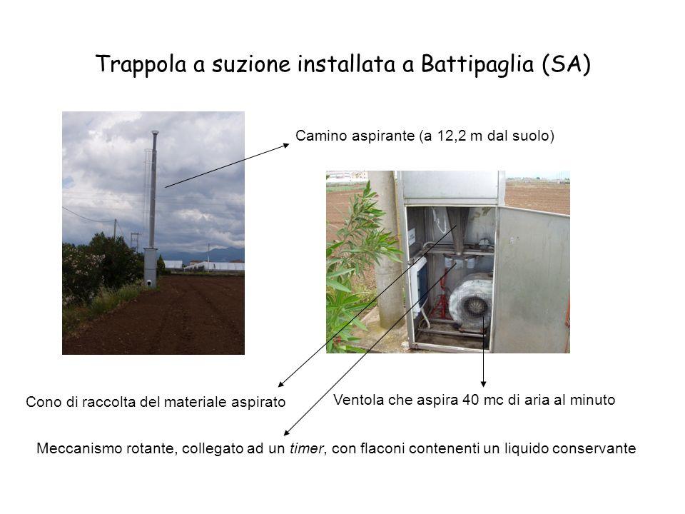 Trappola a suzione installata a Battipaglia (SA)