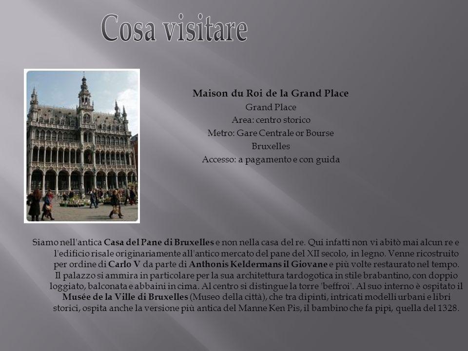 Cosa visitare Maison du Roi de la Grand Place Grand Place