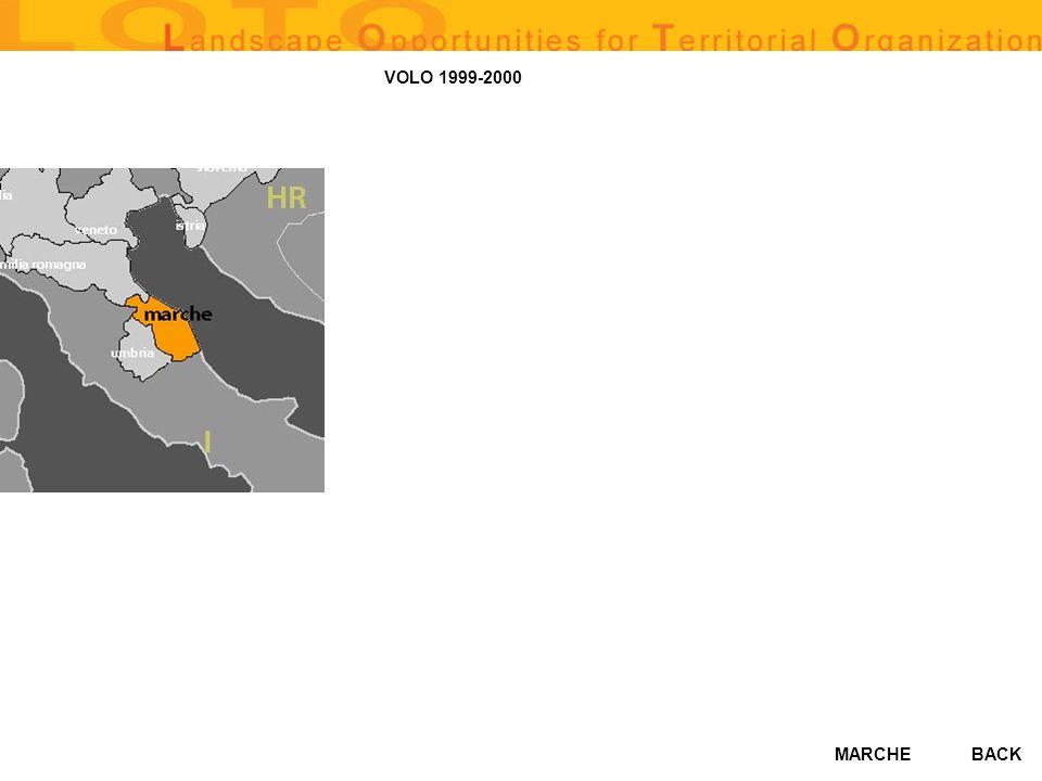 VOLO 1999-2000 BACK