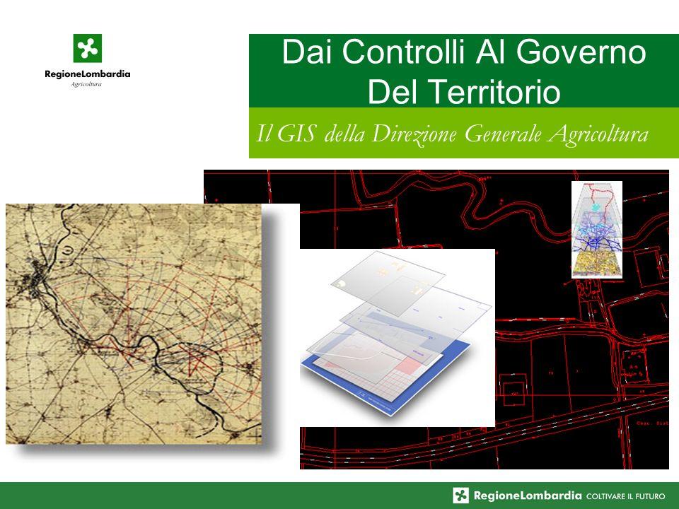 Dai Controlli Al Governo Del Territorio