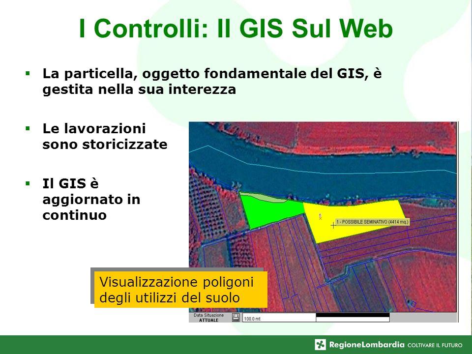 I Controlli: Il GIS Sul Web