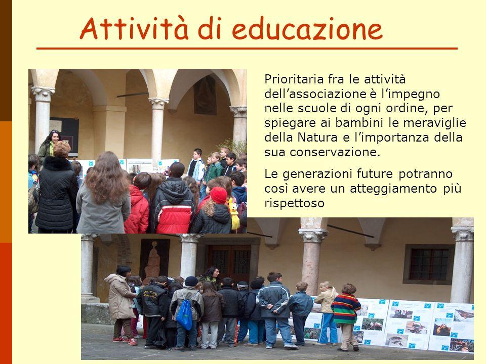 Attività di educazione
