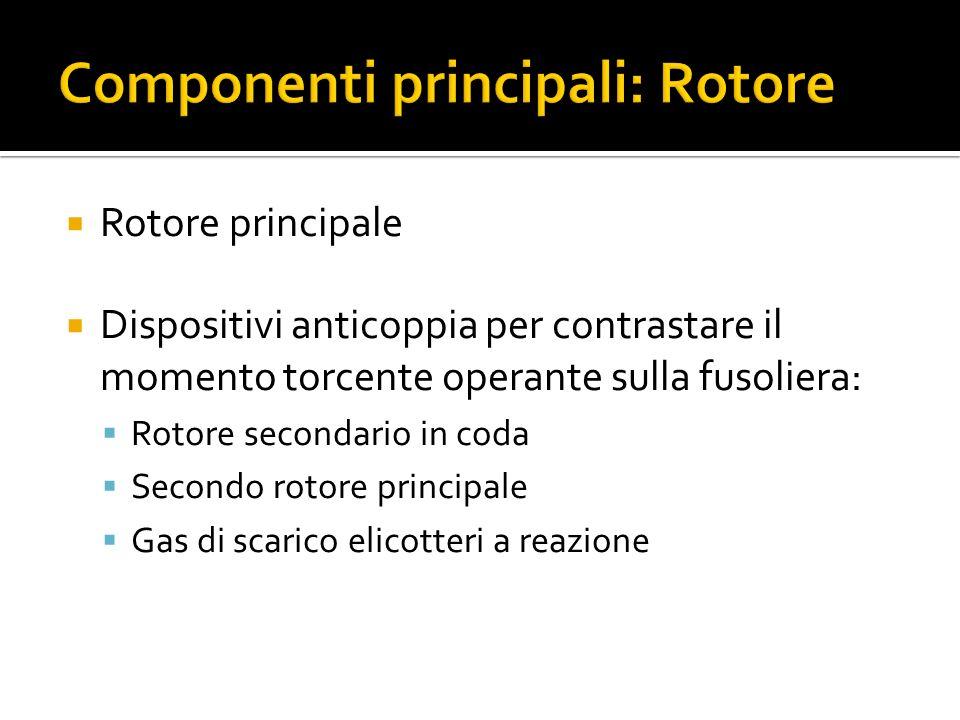 Componenti principali: Rotore