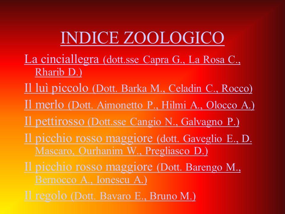 INDICE ZOOLOGICO La cinciallegra (dott.sse Capra G., La Rosa C., Rharib D.) Il luì piccolo (Dott. Barka M., Celadin C., Rocco)