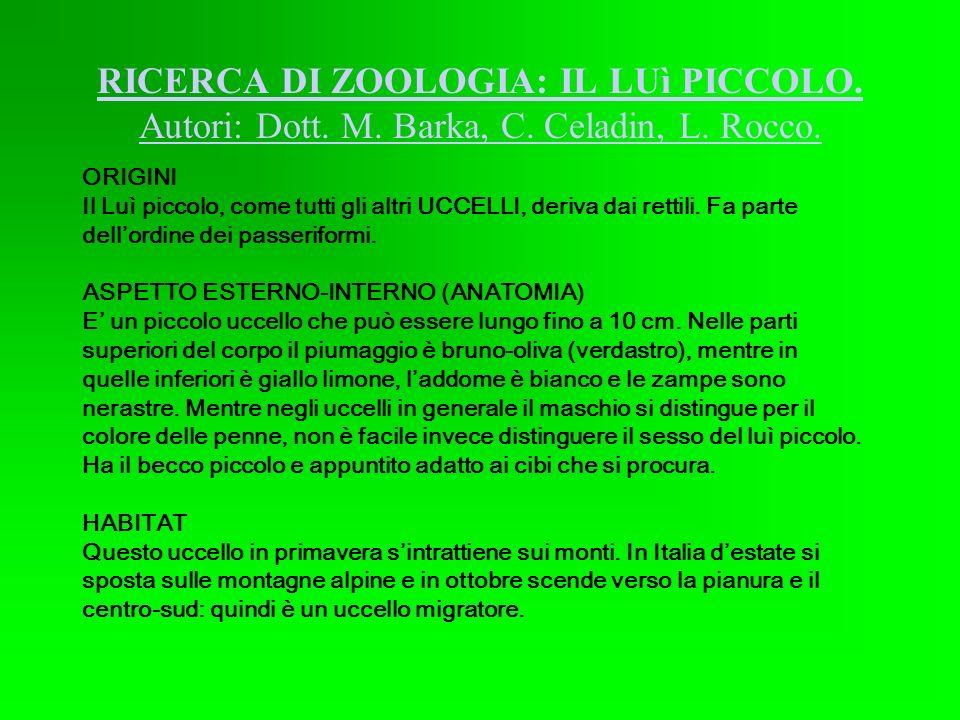 RICERCA DI ZOOLOGIA: IL LUì PICCOLO. Autori: Dott. M. Barka, C