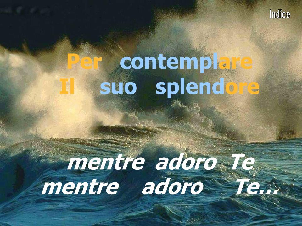 Per contemplare Il suo splendore mentre adoro Te mentre adoro Te…