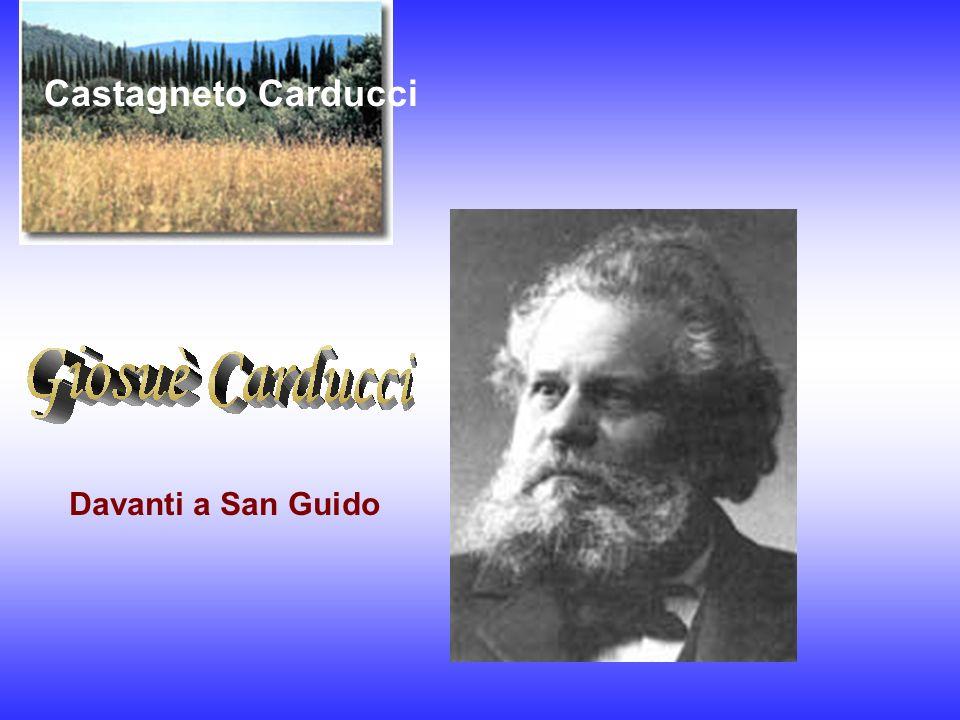 Castagneto Carducci Davanti a San Guido