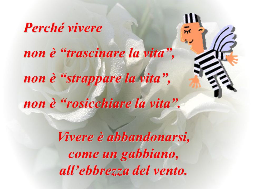 all'ebbrezza del vento.
