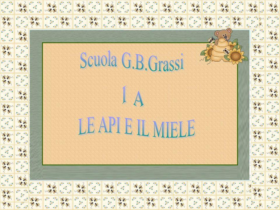 Scuola G.B.Grassi I A LE API E IL MIELE