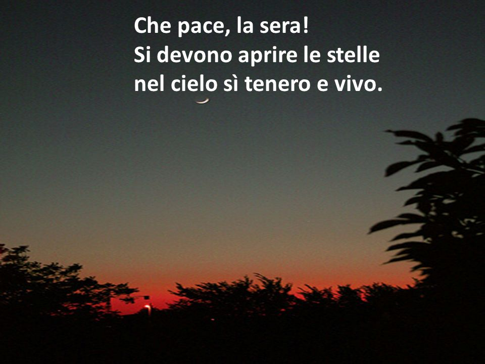 Che pace, la sera! Si devono aprire le stelle nel cielo sì tenero e vivo.
