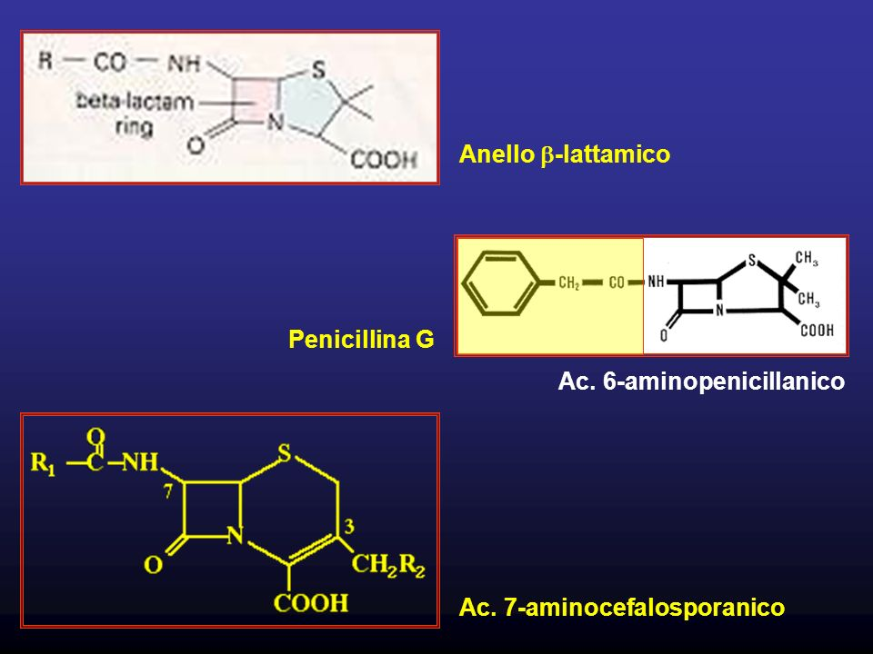 Ac. 6-aminopenicillanico
