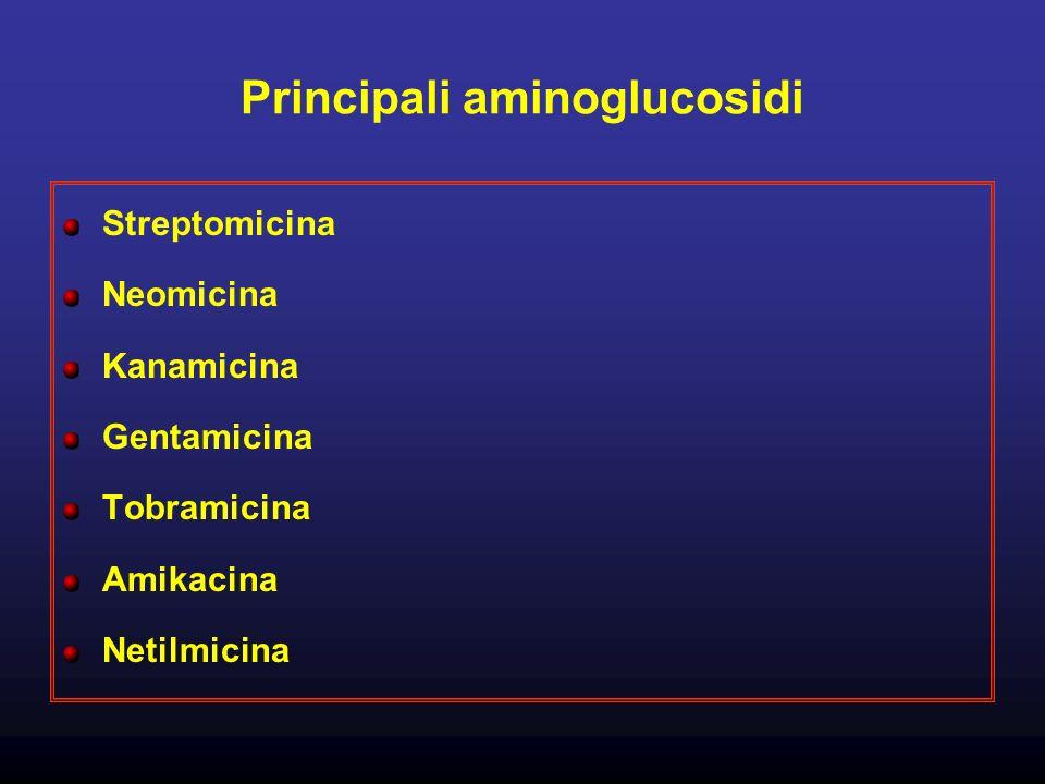 Principali aminoglucosidi
