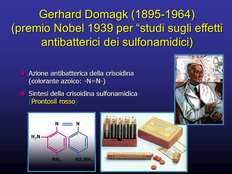 Gerhard Domagk (1895-1964) (premio Nobel 1939 per studi sugli effetti antibatterici dei sulfonamidici)