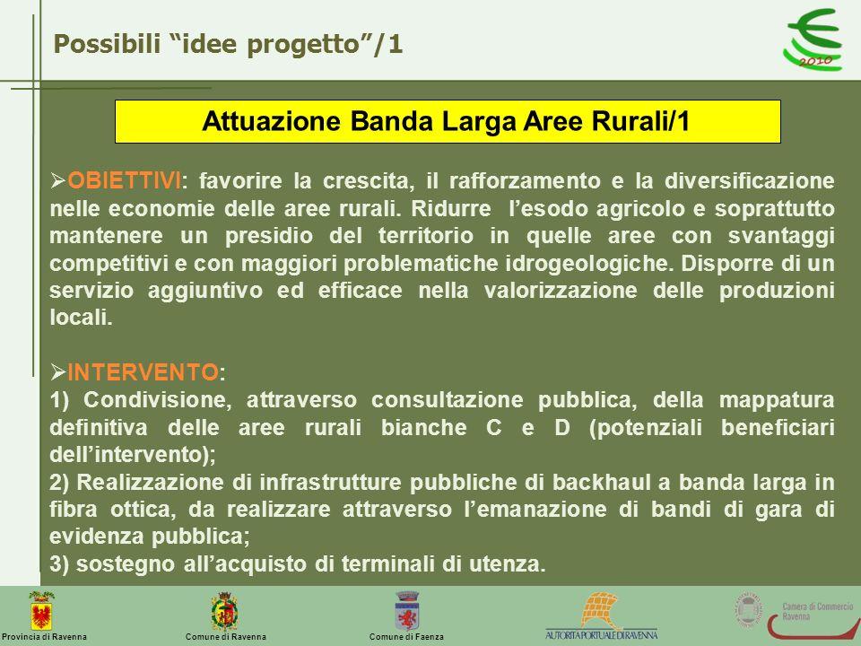 Attuazione Banda Larga Aree Rurali/1