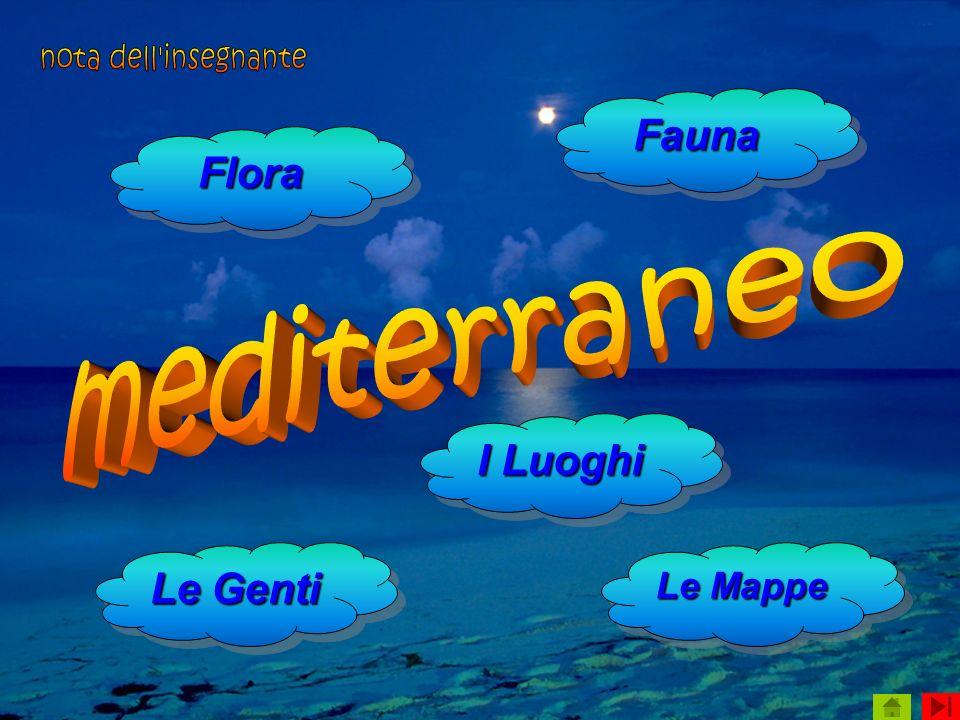 nota dell insegnante mediterraneo Fauna Flora I Luoghi Le Genti