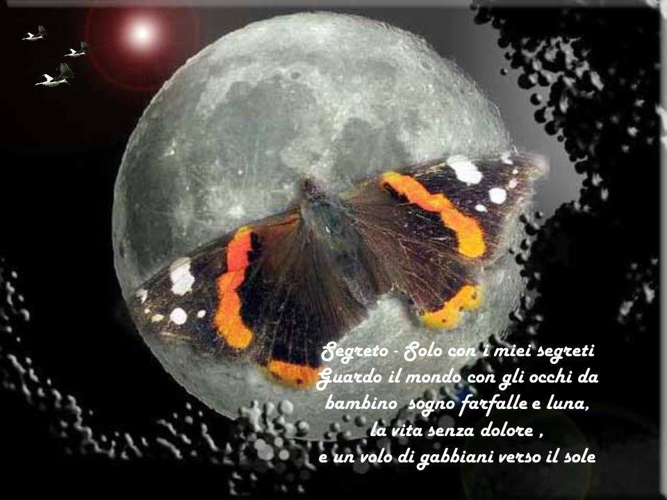 Segreto - Solo con i miei segreti Guardo il mondo con gli occhi da bambino sogno farfalle e luna, la vita senza dolore , e un volo di gabbiani verso il sole