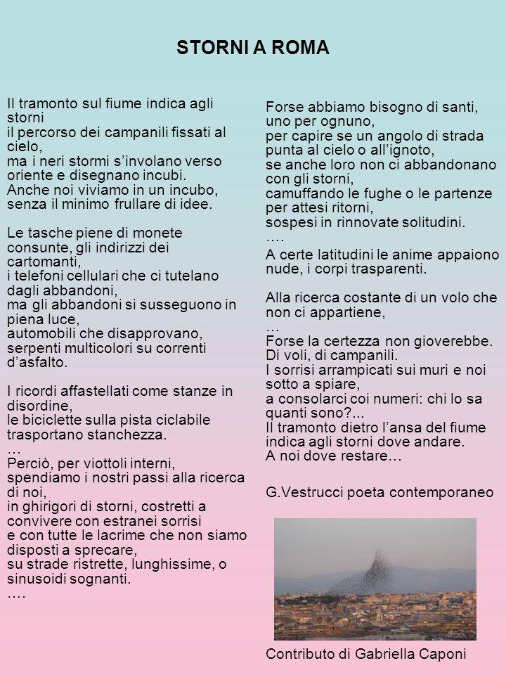 STORNI A ROMA
