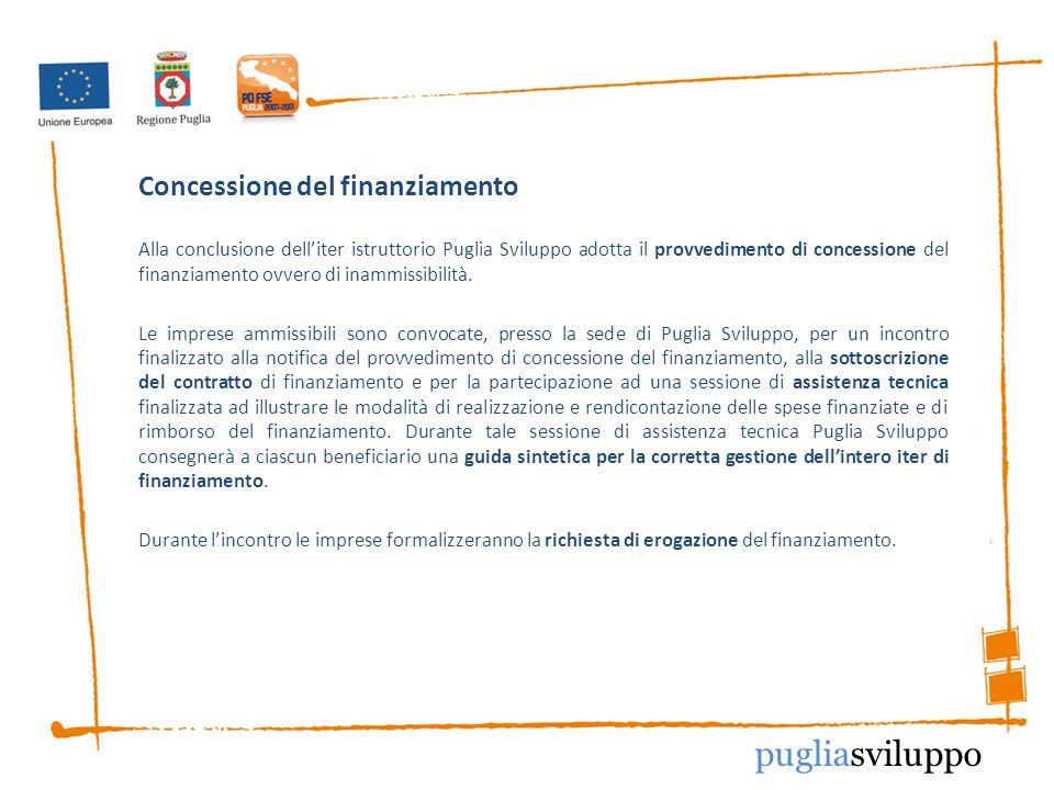 Concessione del finanziamento