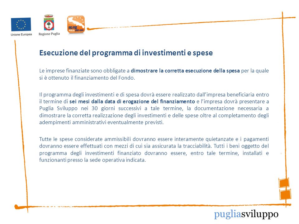 Esecuzione del programma di investimenti e spese