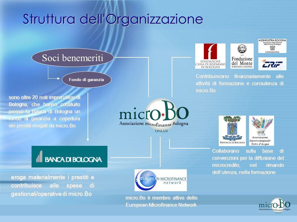 Struttura dell Organizzazione