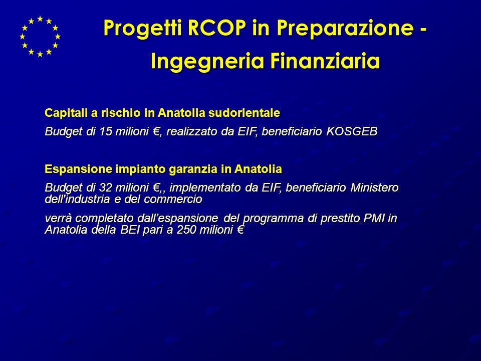 Progetti RCOP in Preparazione - Ingegneria Finanziaria