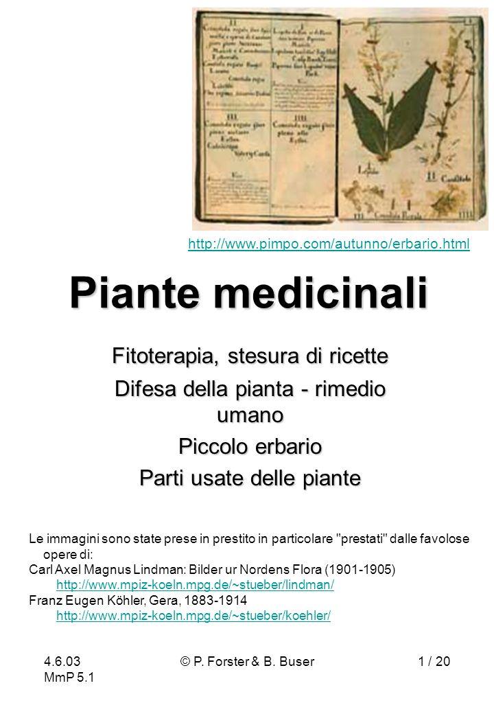 Piante medicinali Fitoterapia, stesura di ricette