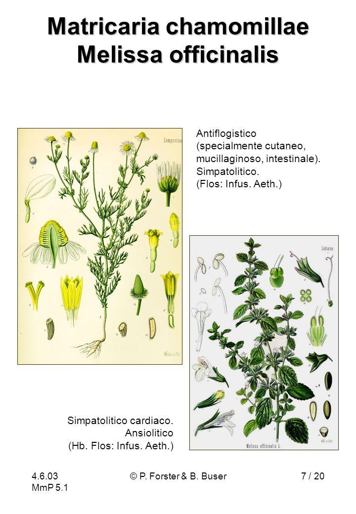 Matricaria chamomillae Melissa officinalis