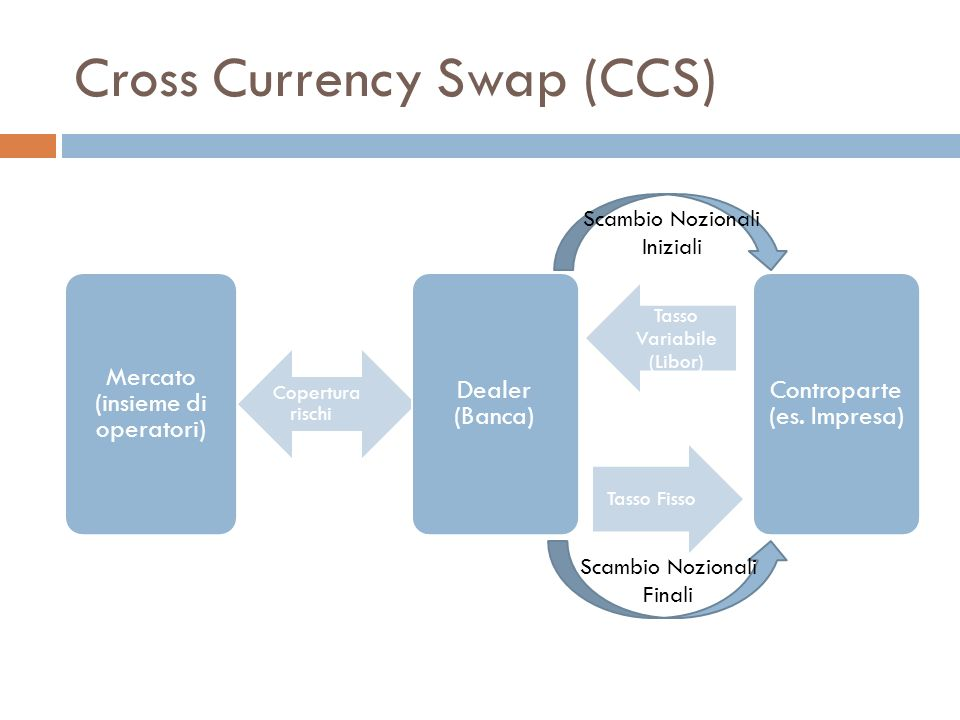 Cross Currency Swap (CCS)