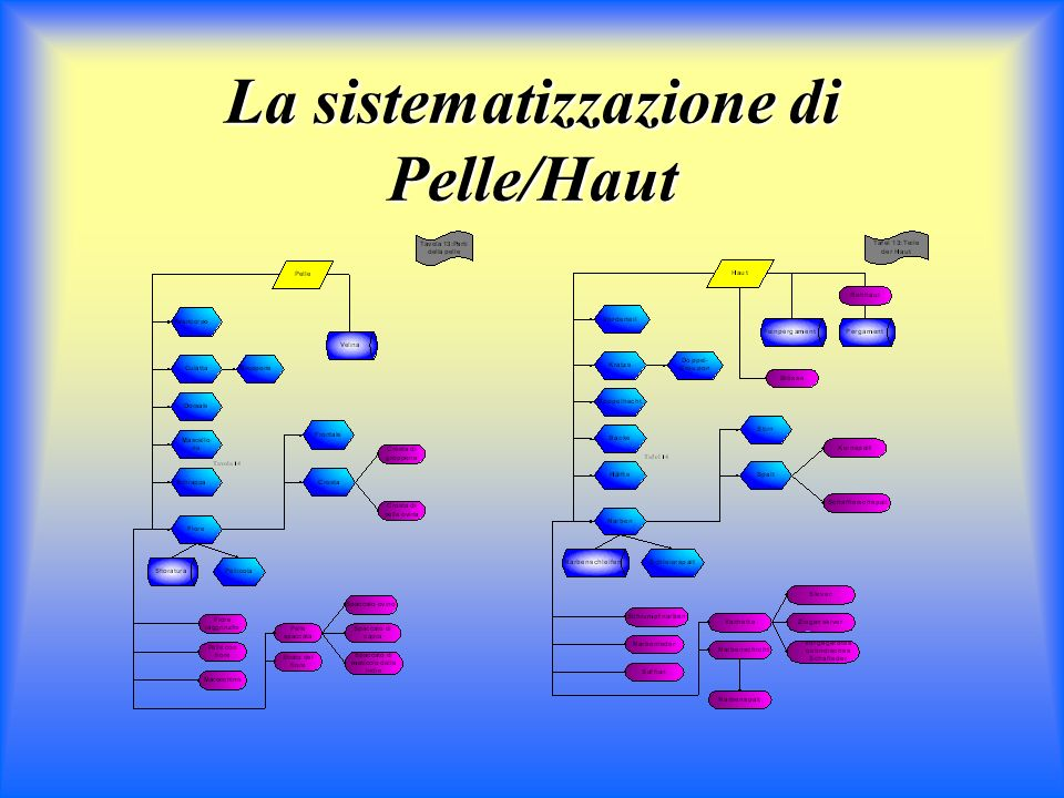 La sistematizzazione di Pelle/Haut