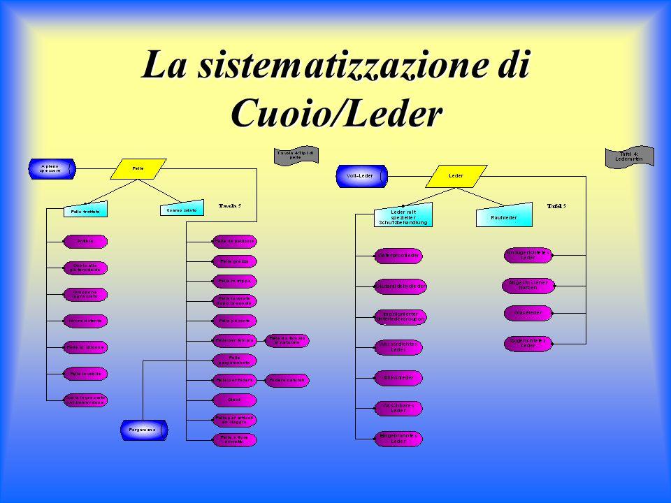 La sistematizzazione di Cuoio/Leder