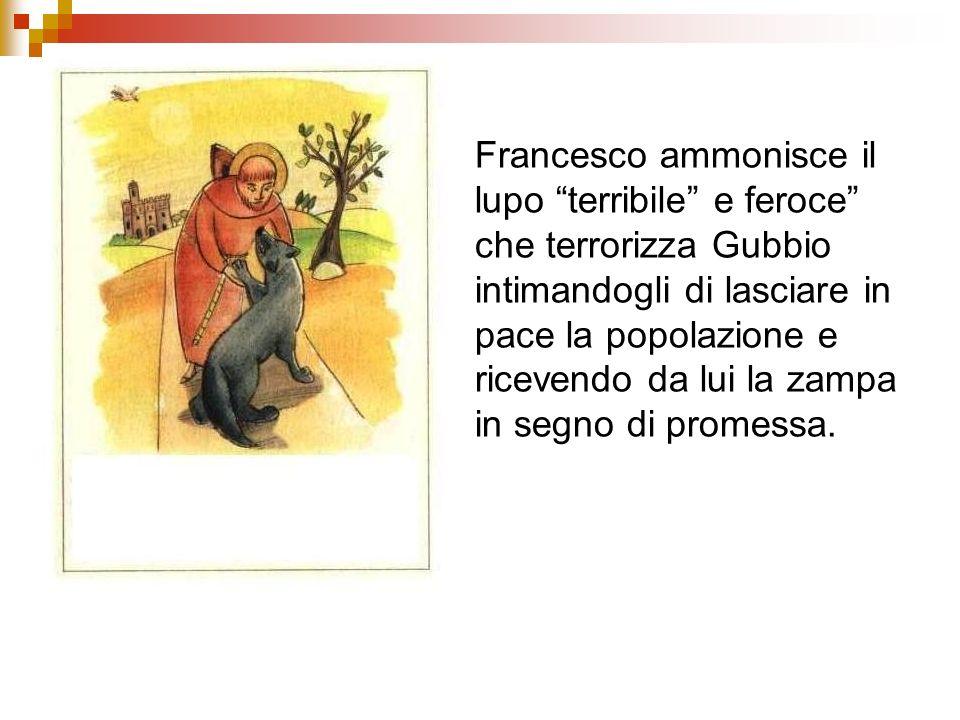 Francesco ammonisce il lupo terribile e feroce che terrorizza Gubbio intimandogli di lasciare in pace la popolazione e ricevendo da lui la zampa in segno di promessa.