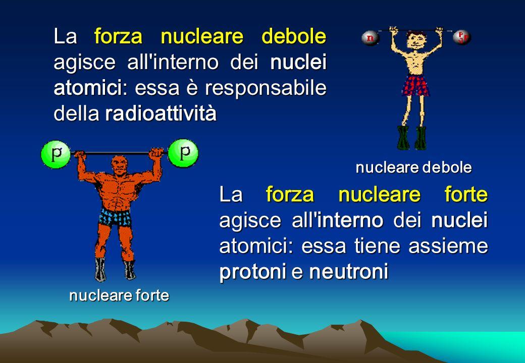 La forza nucleare debole agisce all interno dei nuclei atomici: essa è responsabile della radioattività