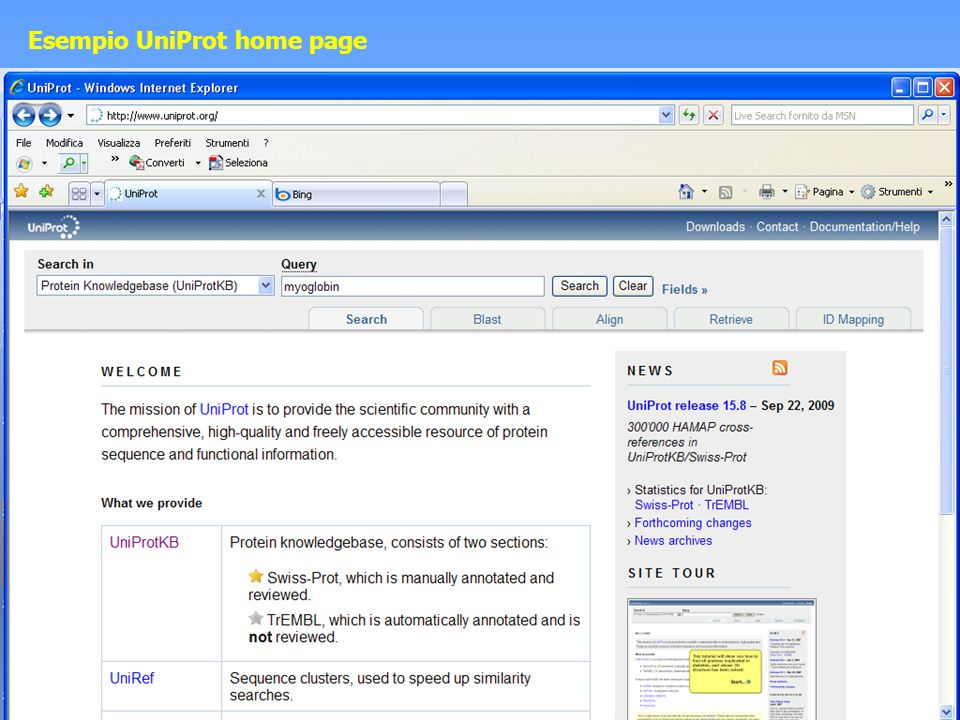 Esempio UniProt home page