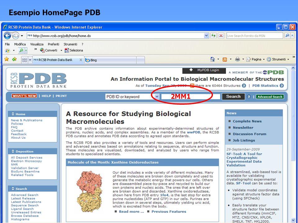 Esempio HomePage PDB 2MM1